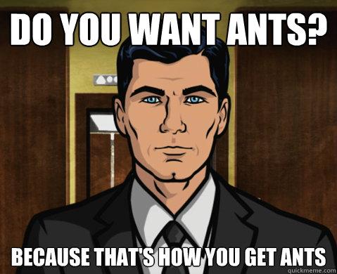 archer ants